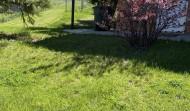 809 trails no cats some dog  1050 mth 3 bed 2 bath1car garage